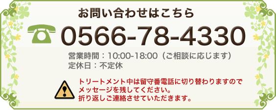 電話番号:0564-55-3328